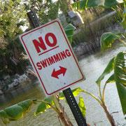 Aber wieso ist denn hier schwimmen verboten?