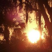 Einmal mehr ein unvergesslicher Sonnenuntergang in der Natur...