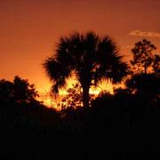 und wieder ein wunderschöner Sonnenuntergang...