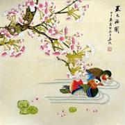le anatre mandarine - the mandarin ducks