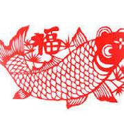 il pesce - the fish