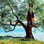 Mein Freund, der Baum. Aquarell (2019). Privatbesitz