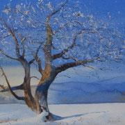 Winterwelt, voller Erwartung. Aquarell (2020). Erhältlich