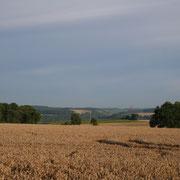 Der Standort des Wachthauses von Neusaß, der Wallfahrtskapelle über Schöntal, aus gesehen!