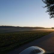 Spätsommermorgen auf dem Glasenberg - erste herbstliche Nebelarme