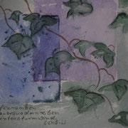Efeuranken (Haiku)
