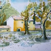 18.06.20 St.Martin de Crau - Provence