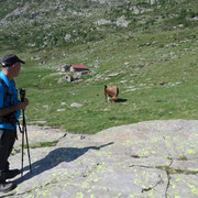 Alp de Carnac 1953 m