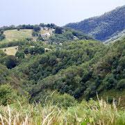 Cortaccio