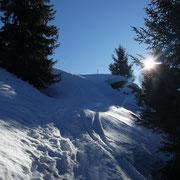 Alp di Brogoldone