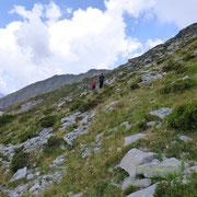 Discesa verso il sentiero alpino