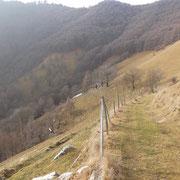 Alpe Loasa 968 m