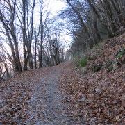 Sentiero per la Madonna d'Ongero