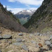 Proseguiamo per l'Alpe Bragnei