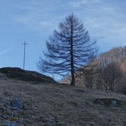 Capoli 1001 m