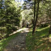 Sul sentiero per San Miro al Monte