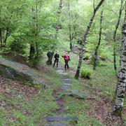 Dall'Alpe del Tiglio 1052 m seguiamo il sentiero che conduce a Cremorasco