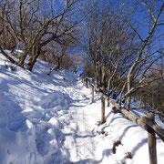 Salita al Monte Bolettone