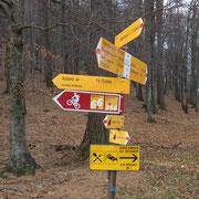 Passo di Monte Faeta 1117 m