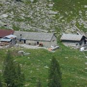 Alpe Arena