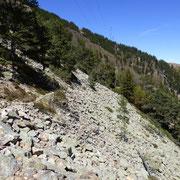 Sentiero per l'Alpe di Neggia