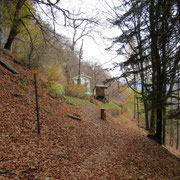 Alpe Fontanía 1037 m