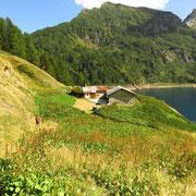 Alpe Tremorgio