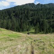 Ritorniamo all'Alpe di Ravina