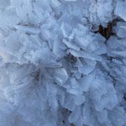 Cristalli di neve e ghiaccio