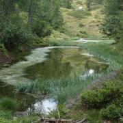 Grasso di Lago 1766 m