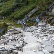 Sentiero per l'Alpe Arena