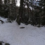 Sul sentiero per l'Alpe di Motto