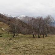 Súra Canaa 1064 m