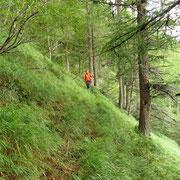 Dall'Alpe Matro all'Alpe di Serdena