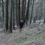 Sentiero Domàs - Motto
