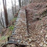 Sul sentiero per l'Alpe d'Urno