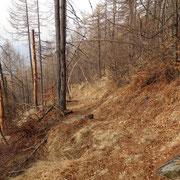 Sentiero per Cimetta - Trosa
