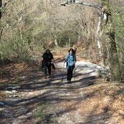 Proseguiamo verso il Monte Bisbino