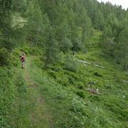 Sentiero per Pradasca
