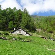 Alpe di Larecc 1445 m