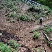 Sul sentiero che da Creda conduce alla Capanna Pairolo