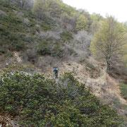 Sentiero per l'Alpe Crocc