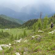 Discesa per l'Alpe di Cadinello
