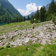Alp del Lago