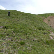 Discesa all'Alpe Crocc