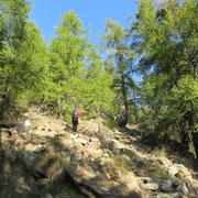 Sul sentiero Alpe Arami - Gaggio