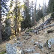 Proseguiamo per l'Alp de Fora