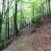 Sentiero per l'Alpe di Devré