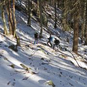 Salita nel bosco verso il Laghetto di Mornera