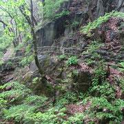 Sentiero Monti di Artore - Lotri